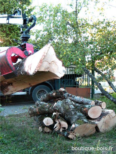 Déchargement de frêne pour le tournage sur bois